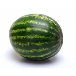 "Vodní meloun Lajko II F1 "" 5 SEMEN"