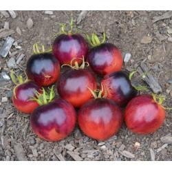 """Rajče Ozark Sunset """" 10 semen v balení"""