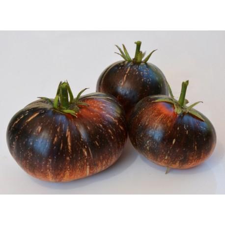 Rajče Dark Galaxy v balení 10 semen